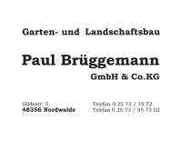 Paul_Brueggemann